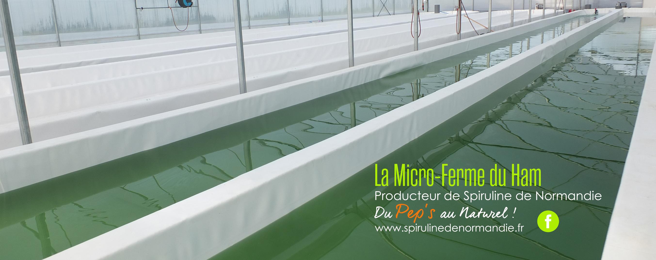 Découvrez notre gamme de produits réalisée avec notre Spiruline de Normandie